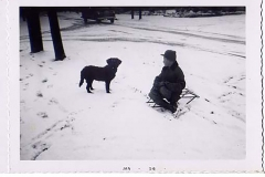1956-boy_and_dog