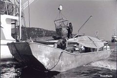 Herring fishing in the 1980s
